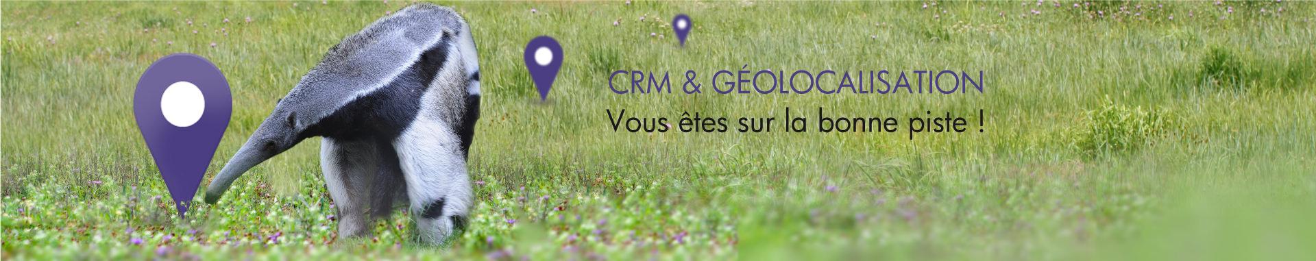 CRM et Géolocalisation : vous êtes sur la bonne piste !