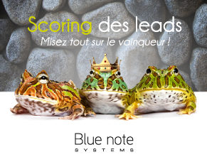 Scoring de leads et prospects - CRM