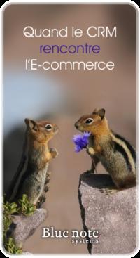quand le CRM rencontre l'E-commerce