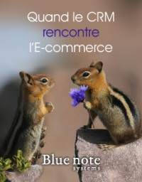 Quand le CRM rencontre l'Ecommerce