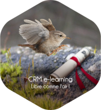 Centre de formation e-learning CRM et Helpdesk