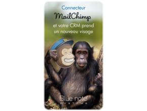 Connecteur CRM et MailChimp