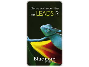Pistes commerciales ou leads