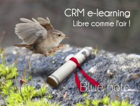 Centre de formation CRM e-learning et blended-learning