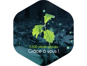 Reforest Action, Agir ensemble pour l'homme et l'environnement - plus de 5500 arbres plantés