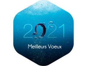 Toute l'équipe de Blue note systems vous souhaite une excellente année 2021 !